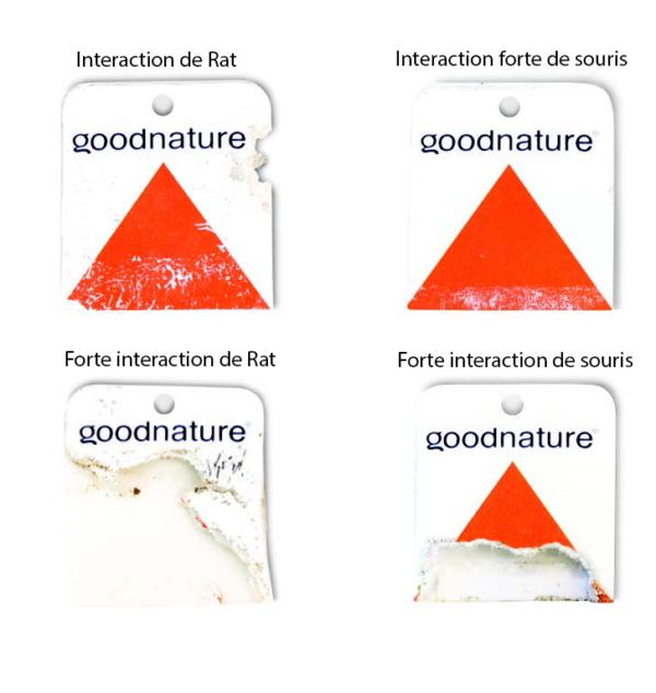 trace sur les cartes de détection Goodnature